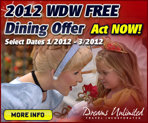 Dreams Unlimited Walt Disney World, Disneyland and Disney Cruise Line Bookings